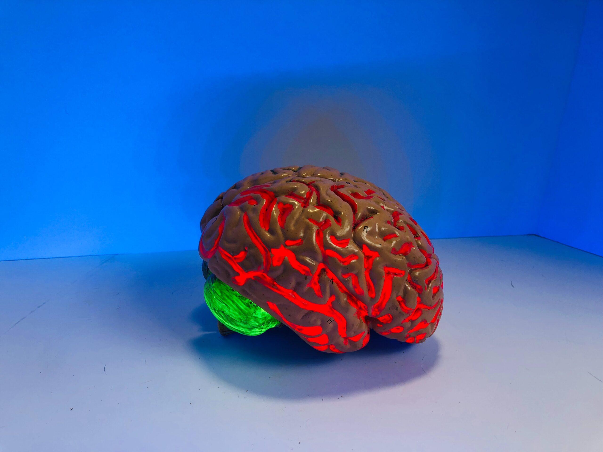 Human brain Christianity Lets You Renew